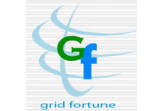 Grid Fortune