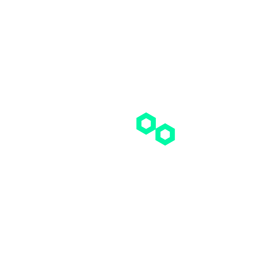 Raccoons Virtual Hackathon