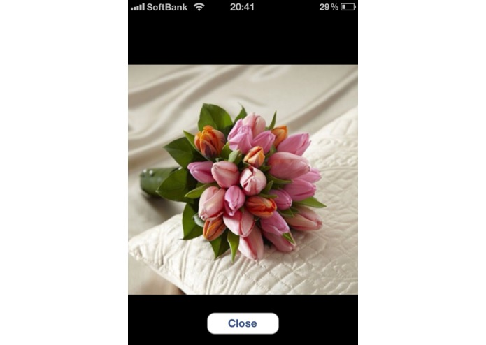Wedding Photo Notes – screenshot 3