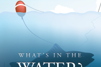 What's in the Water?