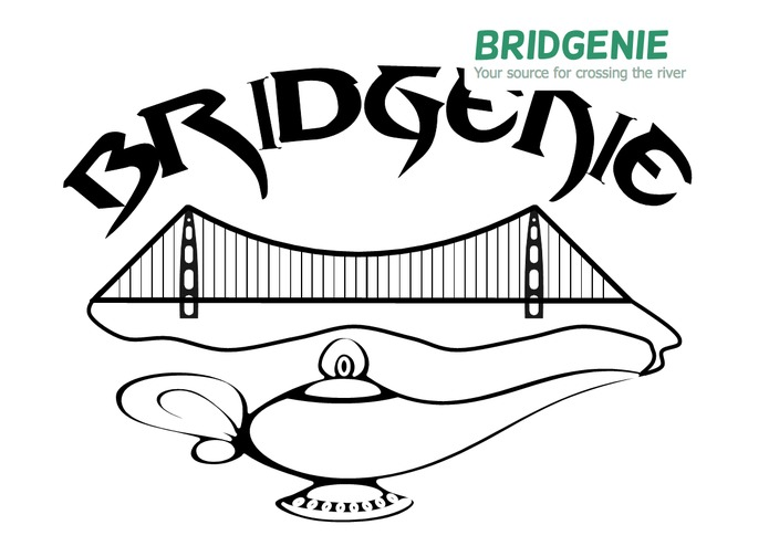 BridGenie - Bridges Project Tracking – screenshot 1