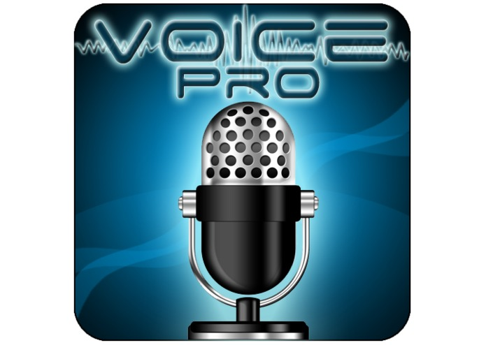 Voice PRO – screenshot 1