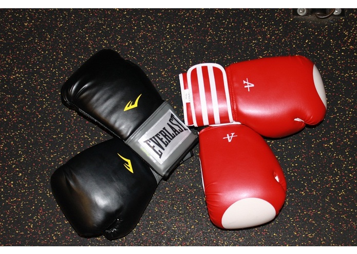 ARES Boxing Gloves – screenshot 1