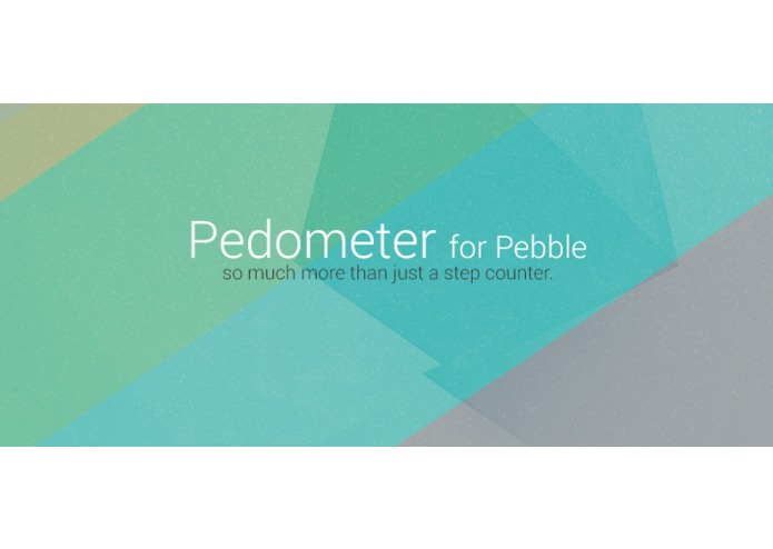 Pedometer – screenshot 1