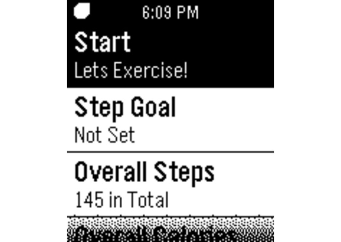 Pedometer – screenshot 2