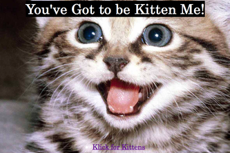 youvegottobekittenme.com