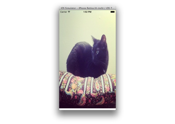 My CATS – screenshot 1
