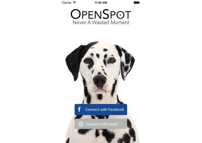 OpenSpot – screenshot 1