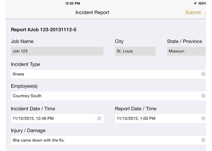 Instant Report App – screenshot 2