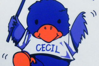 Cecil's Dictionary - Beginner