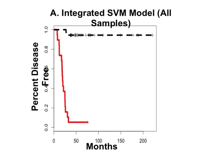 SVM Model for Accurate Breast Cancer Prognosis – screenshot 7