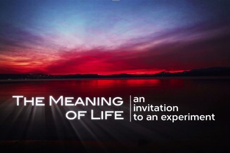 MEANING OF LIFE EXPERIMENT