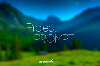 Project Prompt