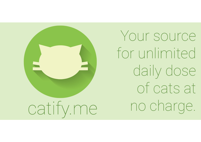 Catify.me – screenshot 6