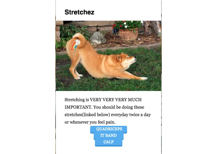 You Can't DOGE this – screenshot 6