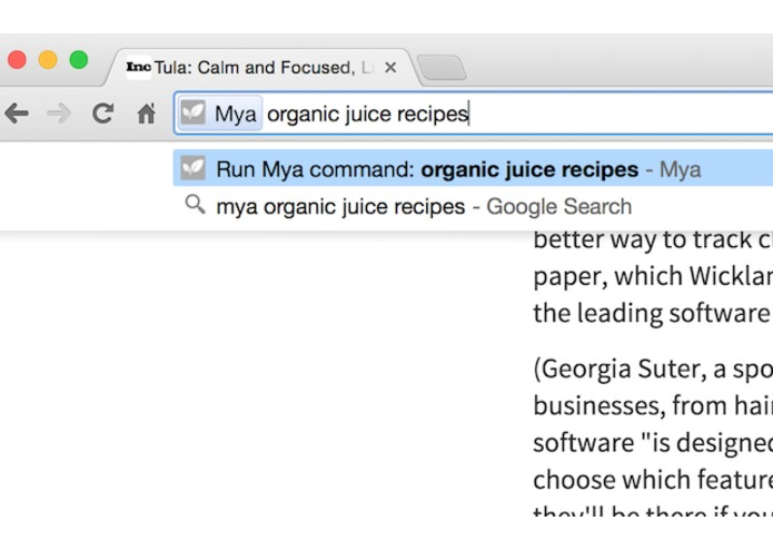 Mya's Extension for Chrome – screenshot 5