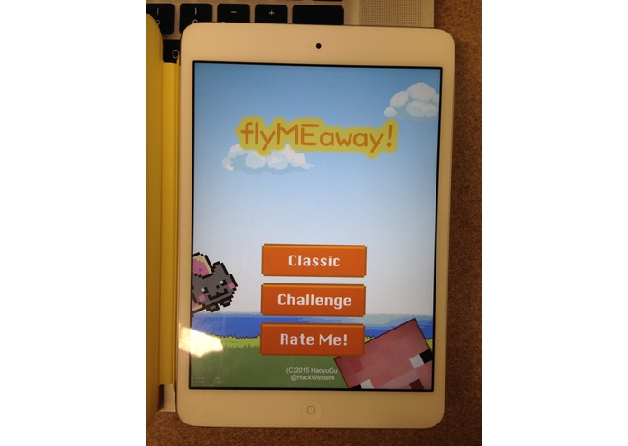 flyMEaway – screenshot 1