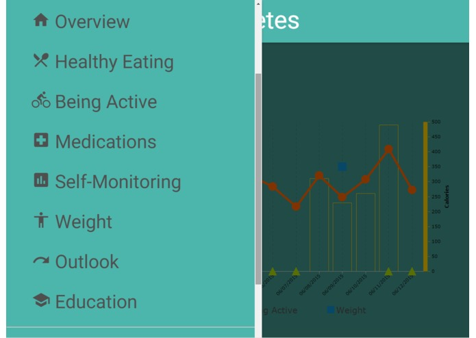 Tracking My Diabetes – screenshot 5