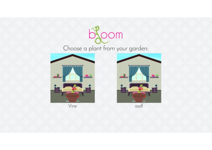 bloom – screenshot 4