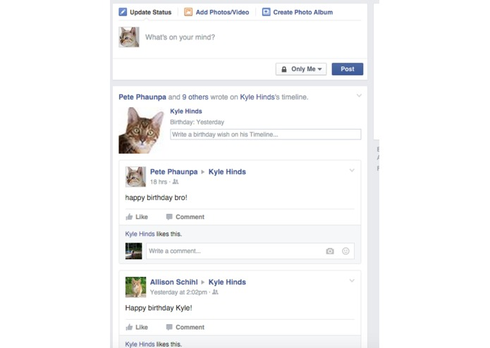 Meowbook – screenshot 1