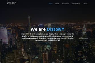 DistoNY: Imagine New York