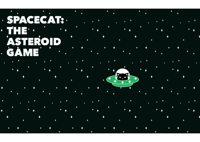 Space Cat: The Asteroid Game – screenshot 2