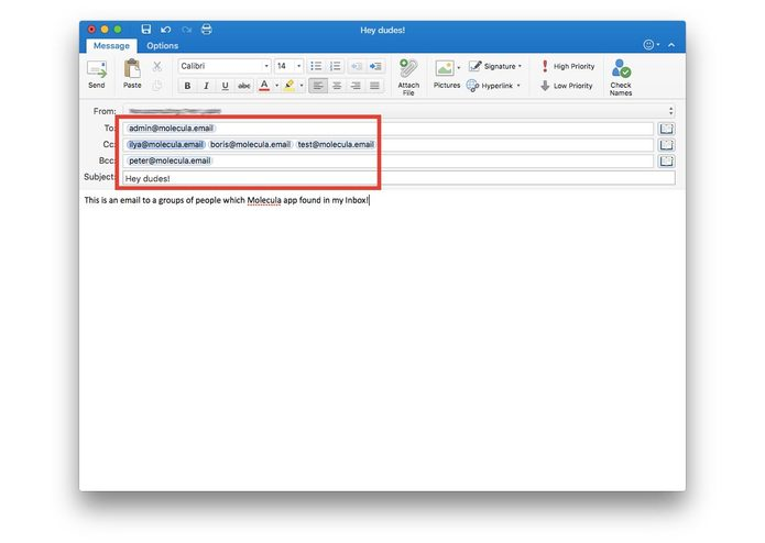 Molecula for Outlook – screenshot 9