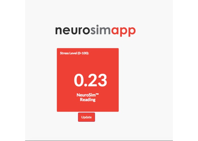 NeuroSim – screenshot 3