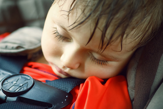Automotive Safeguards for Neglected Infants and Pets