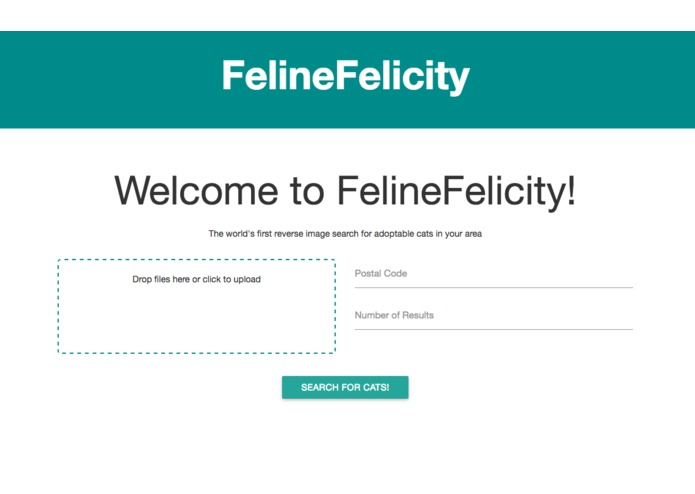 FelineFelicity – screenshot 1