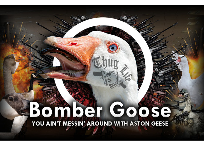 Bomber Goose – screenshot 1