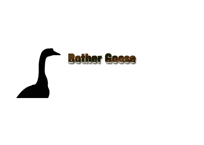 Bother Goose – screenshot 1
