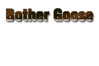 Bother Goose
