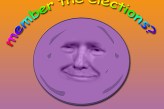 member-the-elections