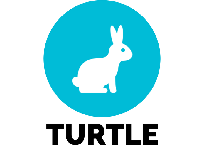 turtle – screenshot 1