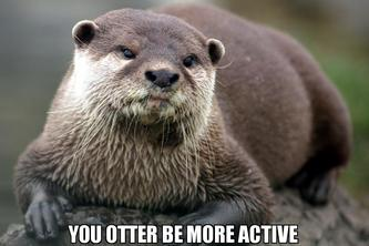 Otter be Active