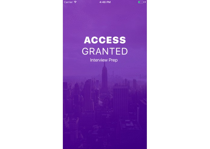 Access Granted – screenshot 6