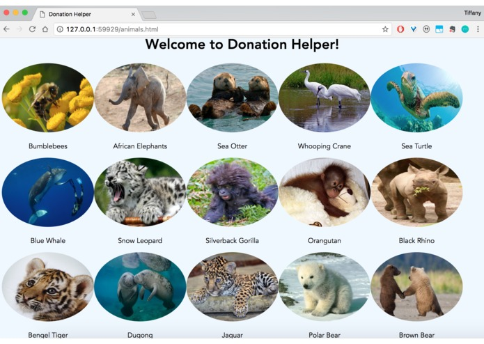 Donation Helper – screenshot 1