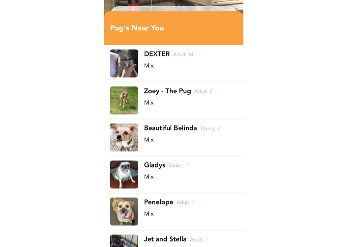 bARky – screenshot 5