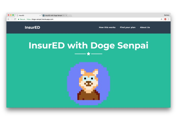 InsurED with Doge Senpai – screenshot 1