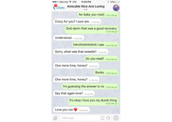BS - Amicable Nice And Loving Bot – screenshot 1