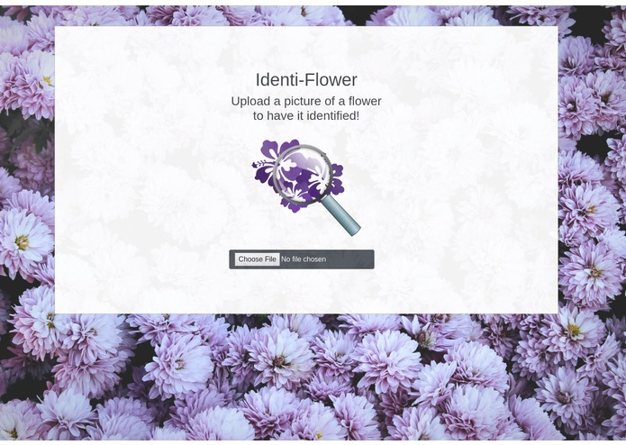 Identi-Flower – screenshot 1