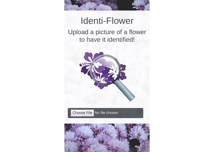 Identi-Flower – screenshot 2