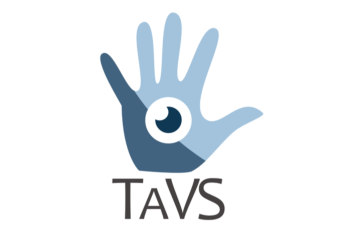 TaVS - Tactile Vision System  – screenshot 1