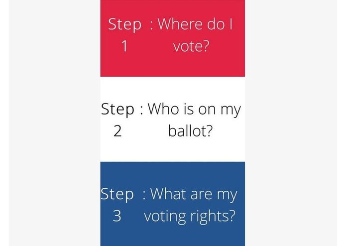How To Vote In Michigan – screenshot 1