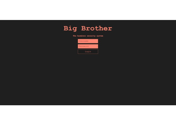 Big Brother – screenshot 1