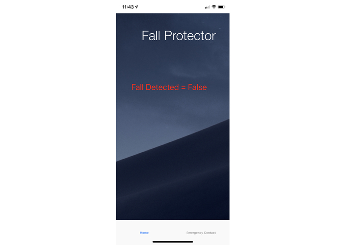 Fall Detector – screenshot 3