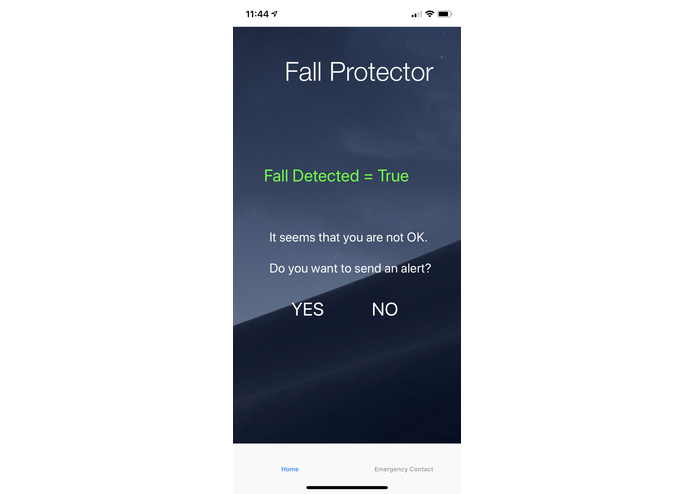 Fall Detector – screenshot 2