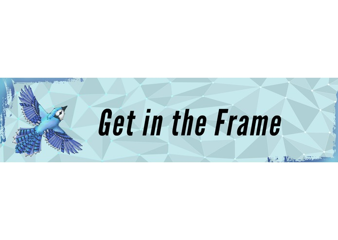 Get in the Frame – screenshot 1