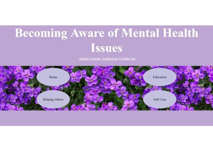 Mental Health Website – screenshot 3